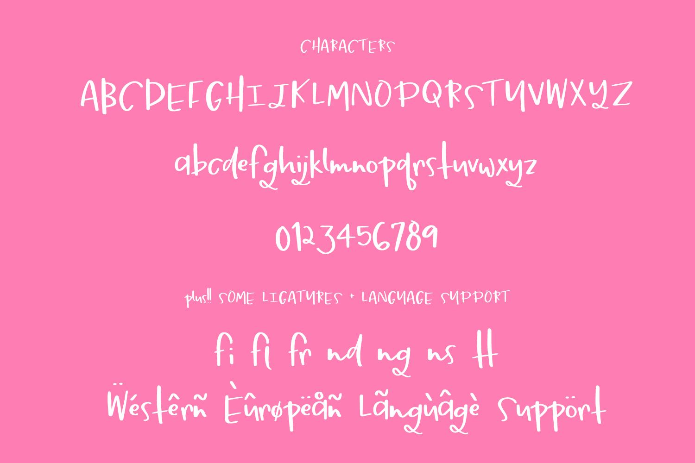 Springbreak Font example image 6