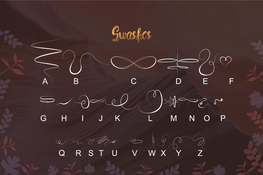 Syelma+Swashes example image 5
