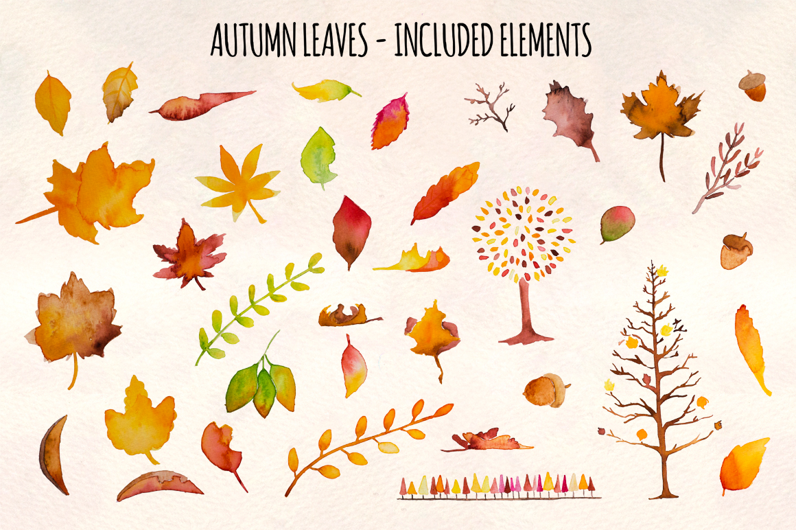 Autumn Leaves 37 Watercolor Elements example image 3