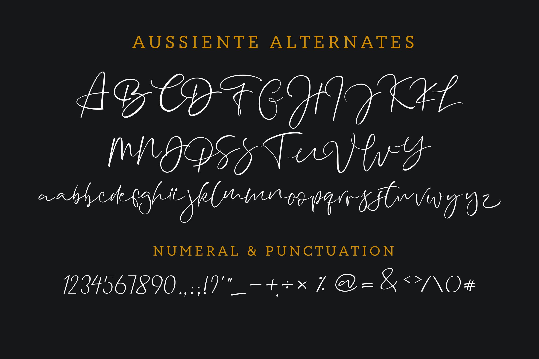 Aussiente Signature - Script example image 9