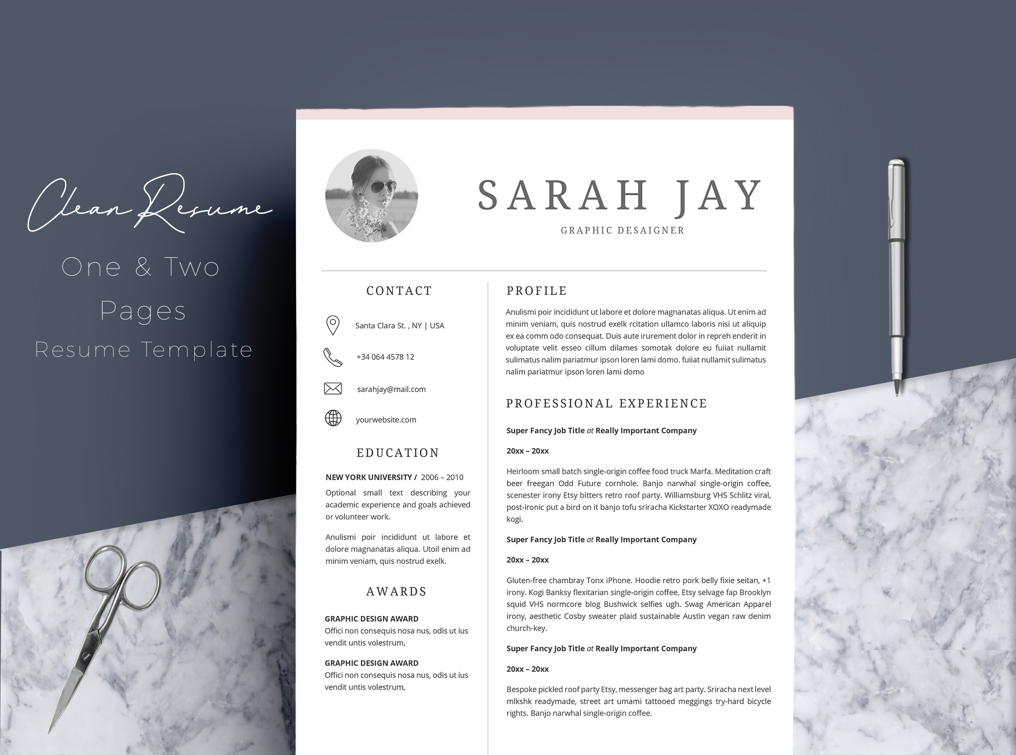 Professional Resume Template Desaign example image 1