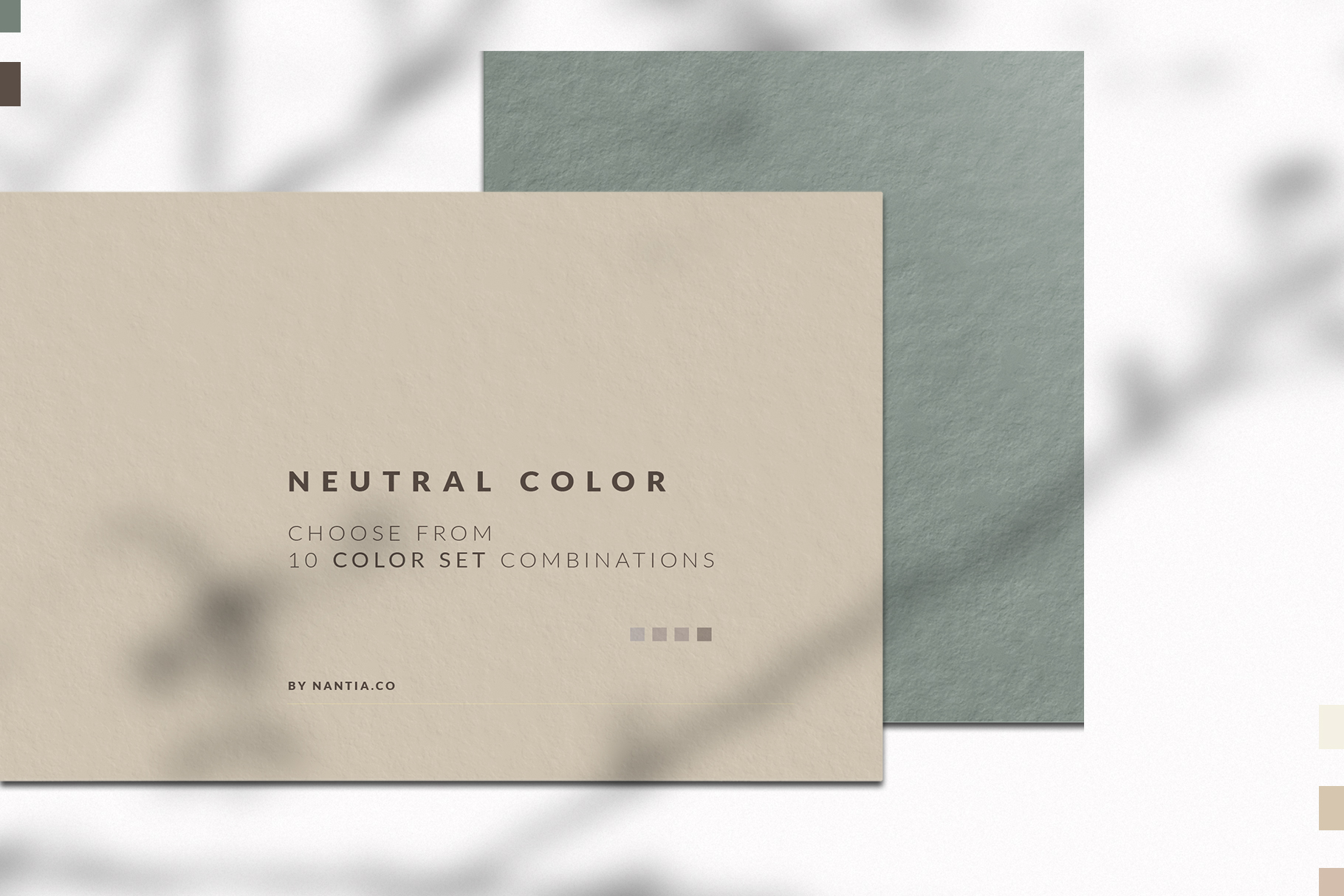 Neutral Color Palette collection example image 2