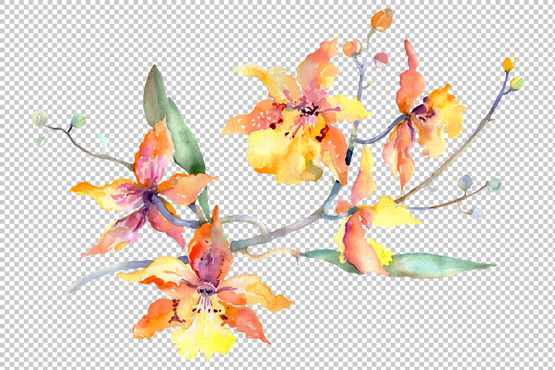 Branch of yellow orchids Watercolor png example image 2