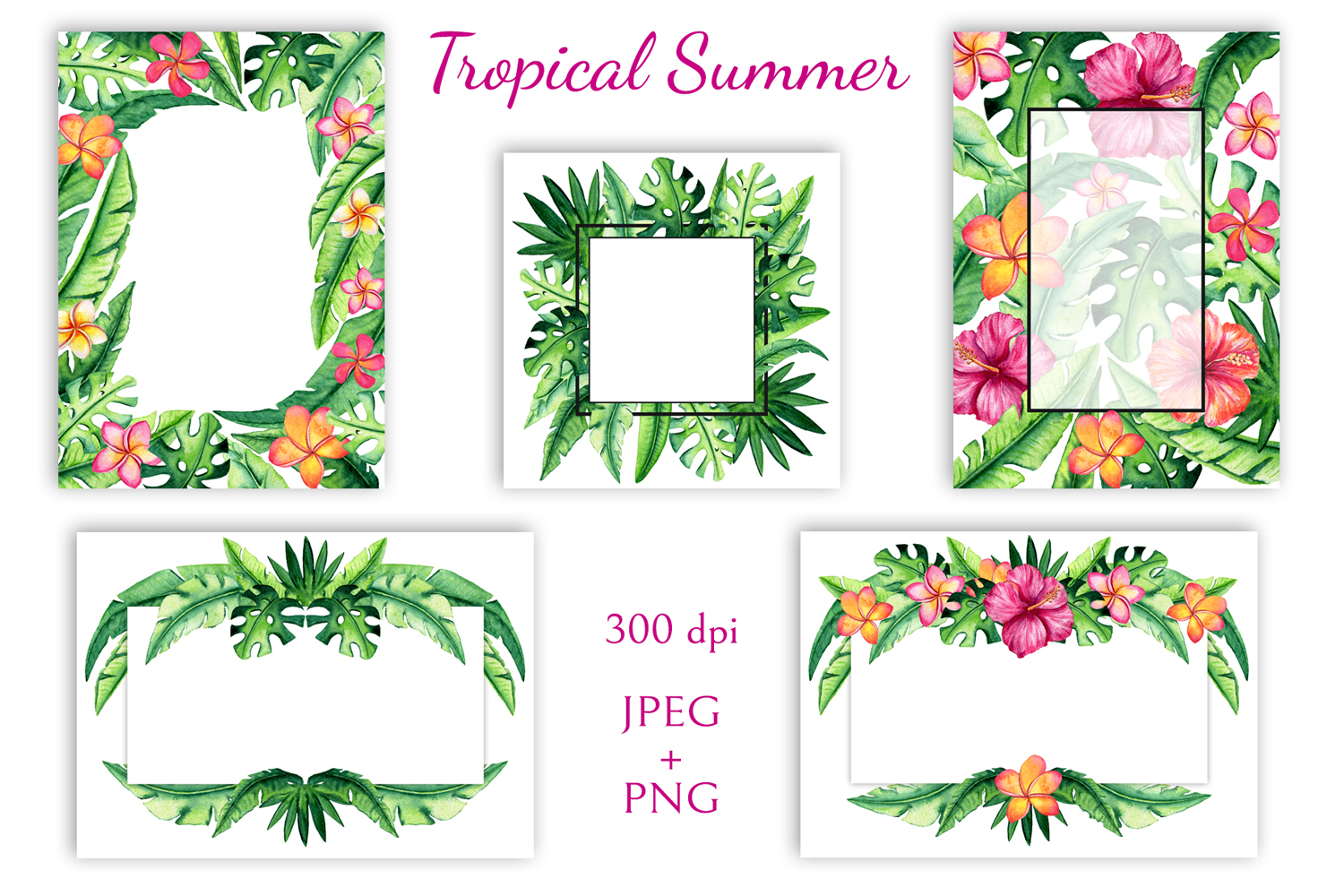 Tropical Summer example image 7