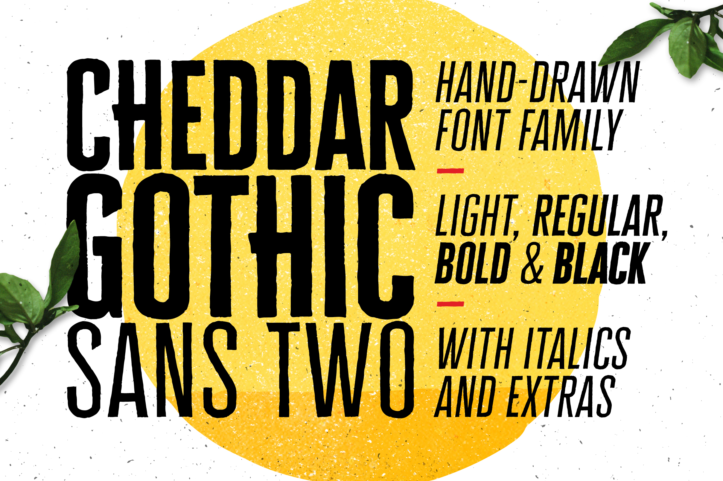 Cheddar Gothic Sans Two Fonts example image 1