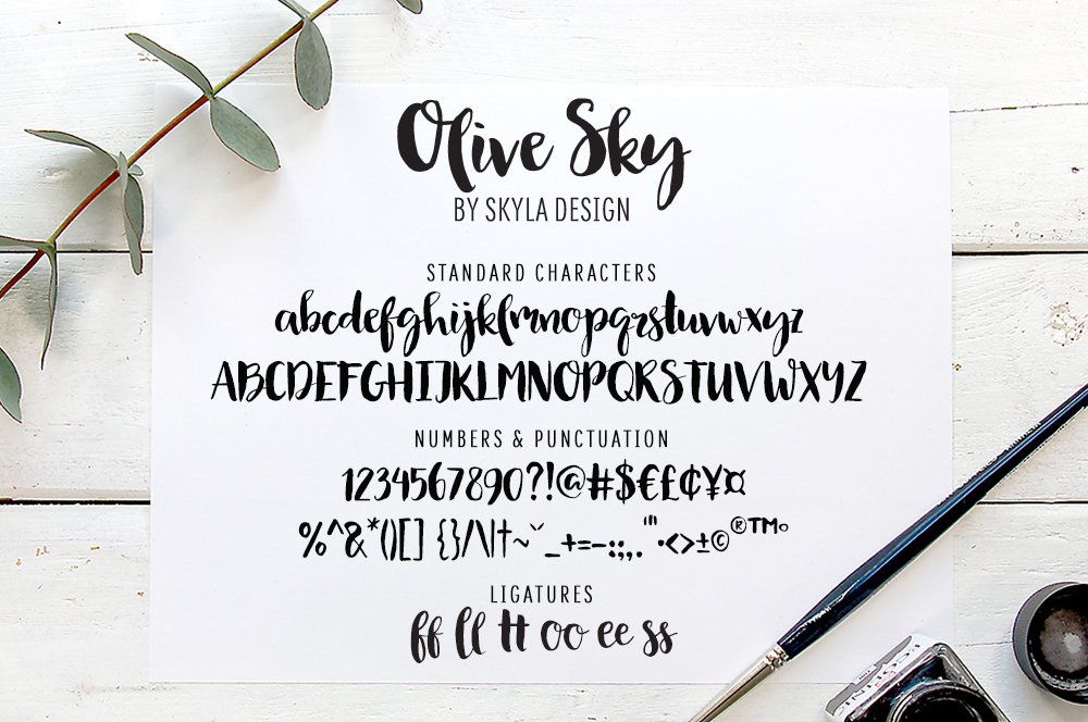Modern brush font - Olive Sky example image 6