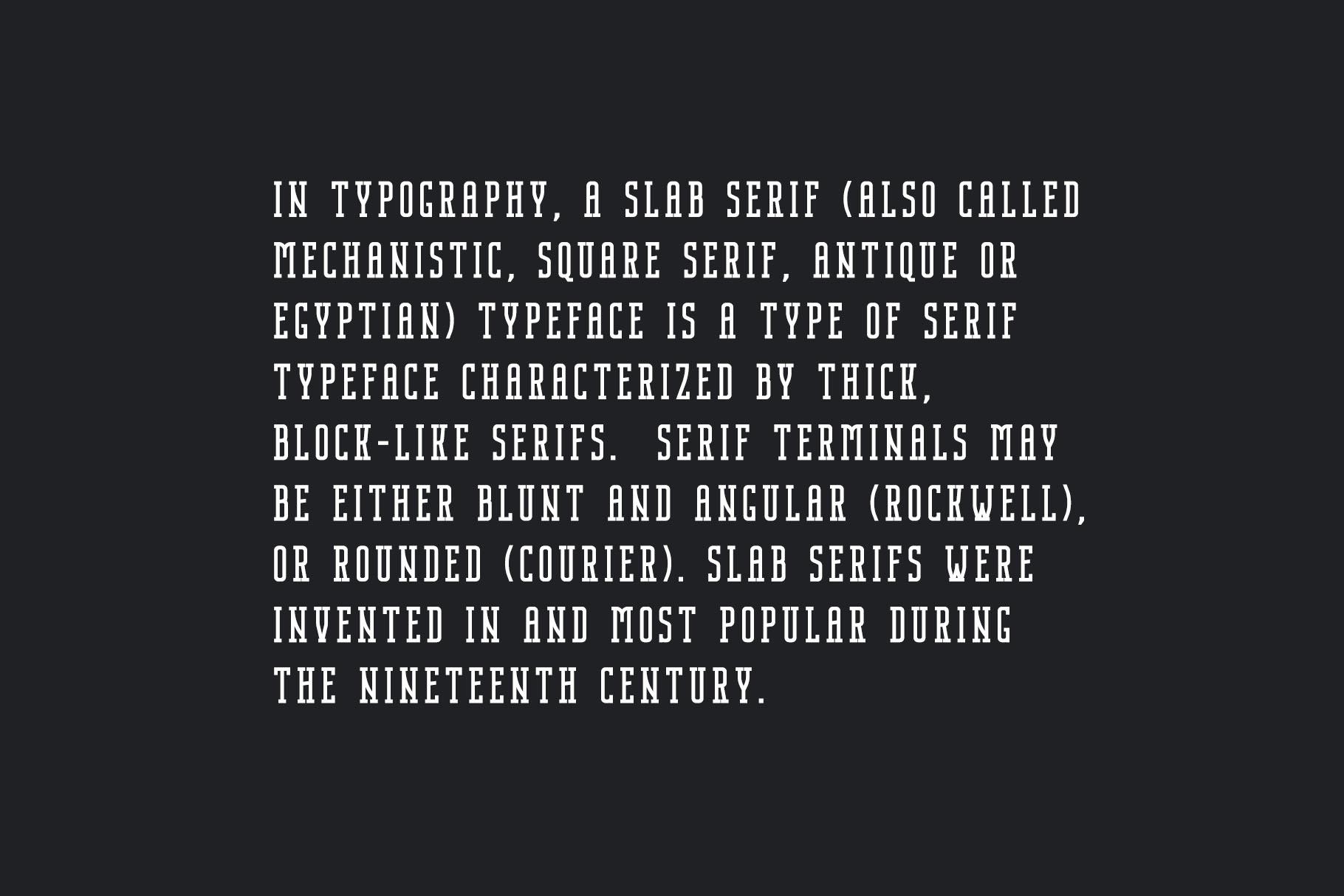 Nordin Slab - Condensed Slab Serif example image 4