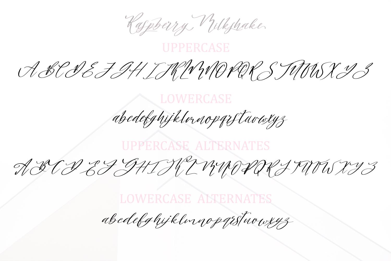 Raspberry Milkshake Script Font example image 7