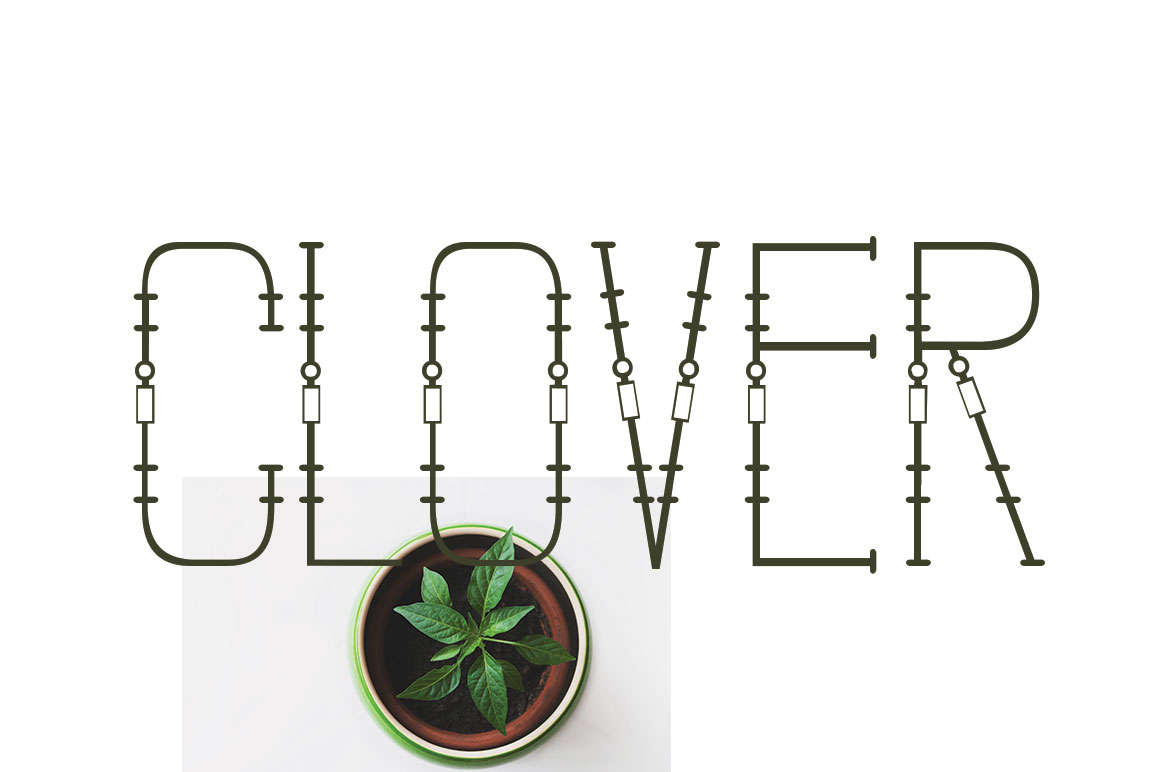 CLOVER FAMILY example image 7