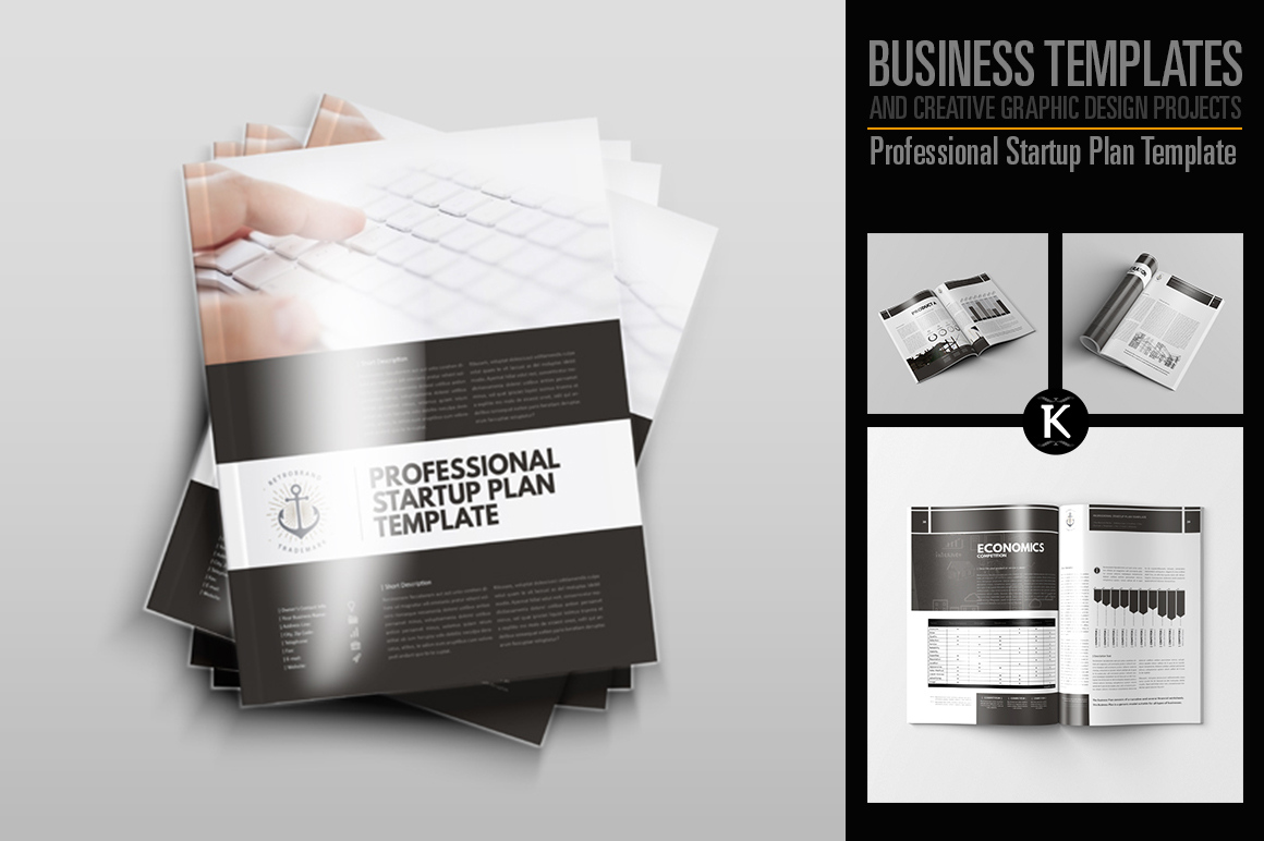 Professional Startup Plan Template example image 1