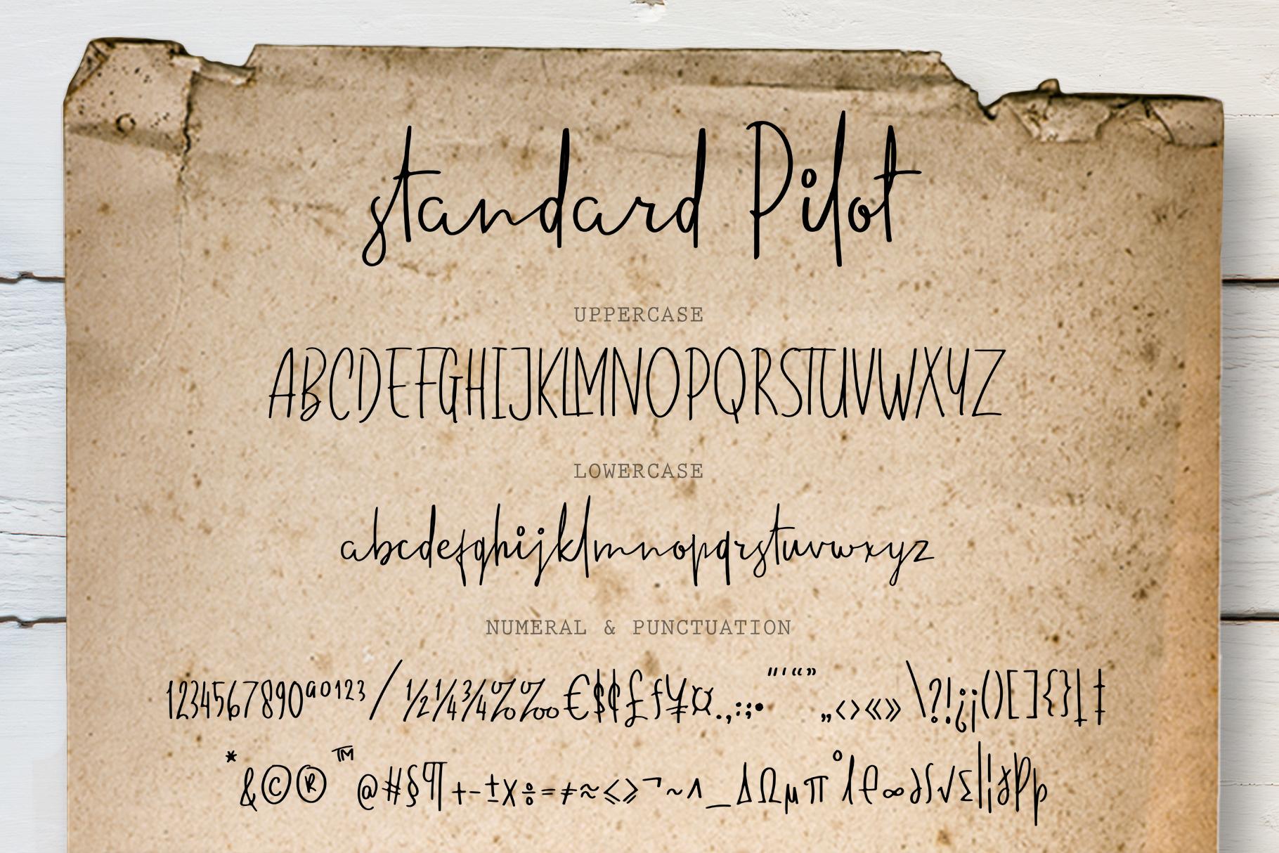 Standard Pilot example image 6