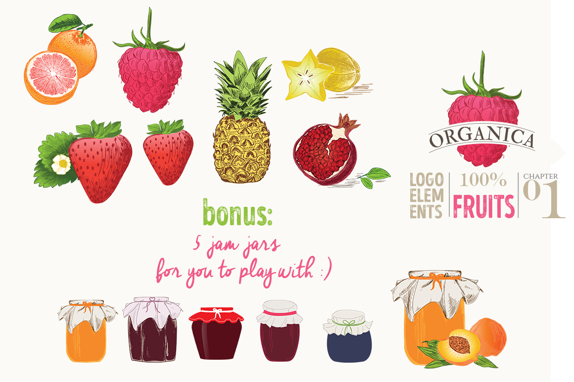 ORGANIC LOGO ELEMENTS  FRUITS example image 7