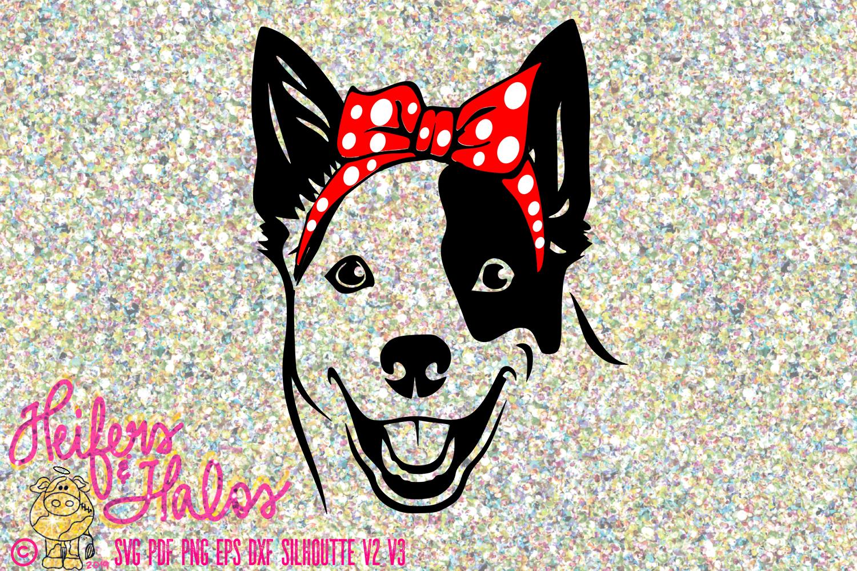 Blue Heeler with Bandana Bow example image 1