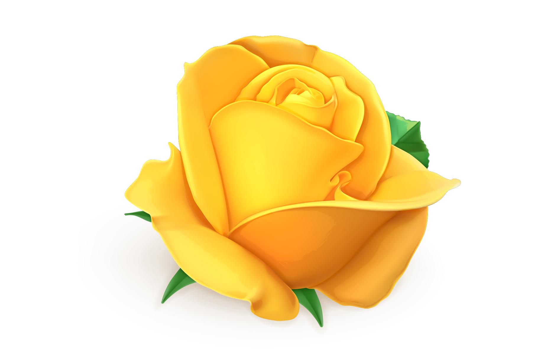 Rose, symbol of love, romantic Valentine's Day, vectors set example image 9