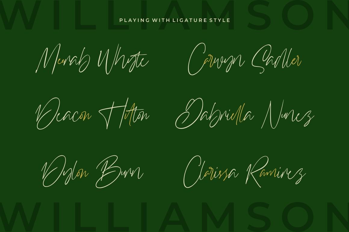 Williamson - Luxury Signature Font example image 5