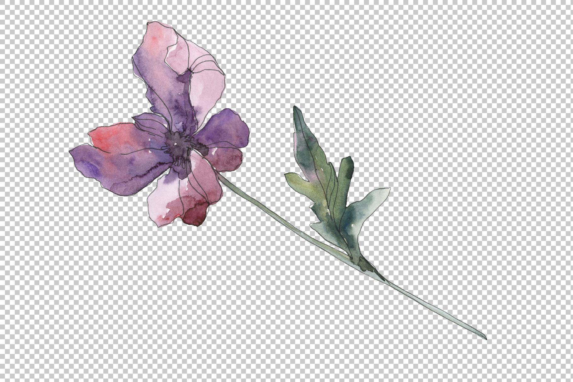 Poppy Watercolor png example image 2