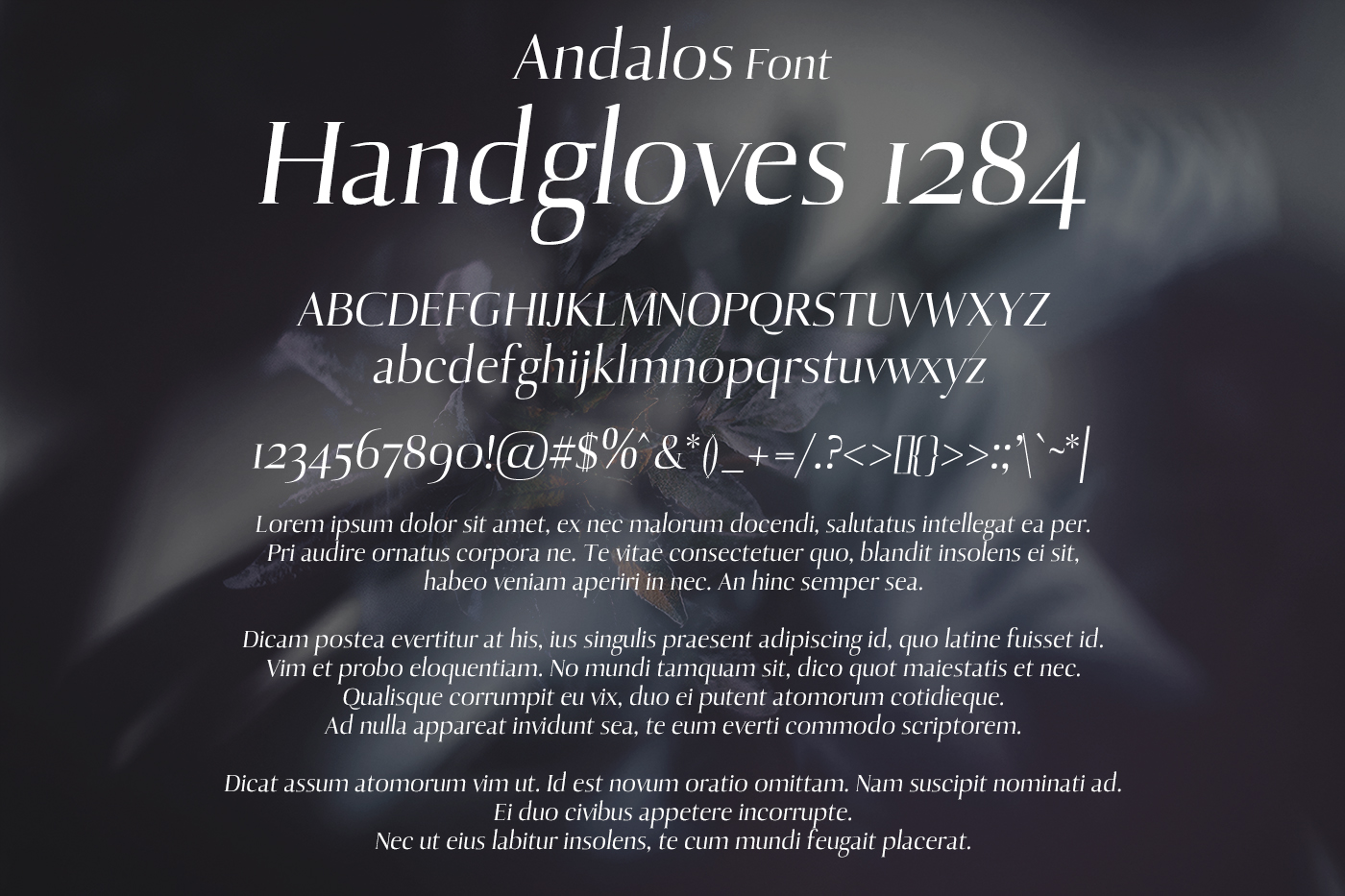 Andalos Font example image 2