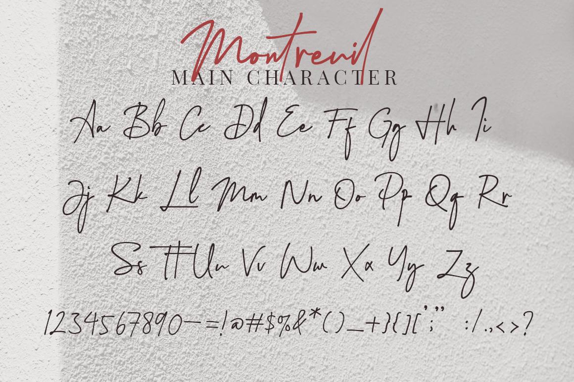 Montreuil - Elegant Signature Font example image 14