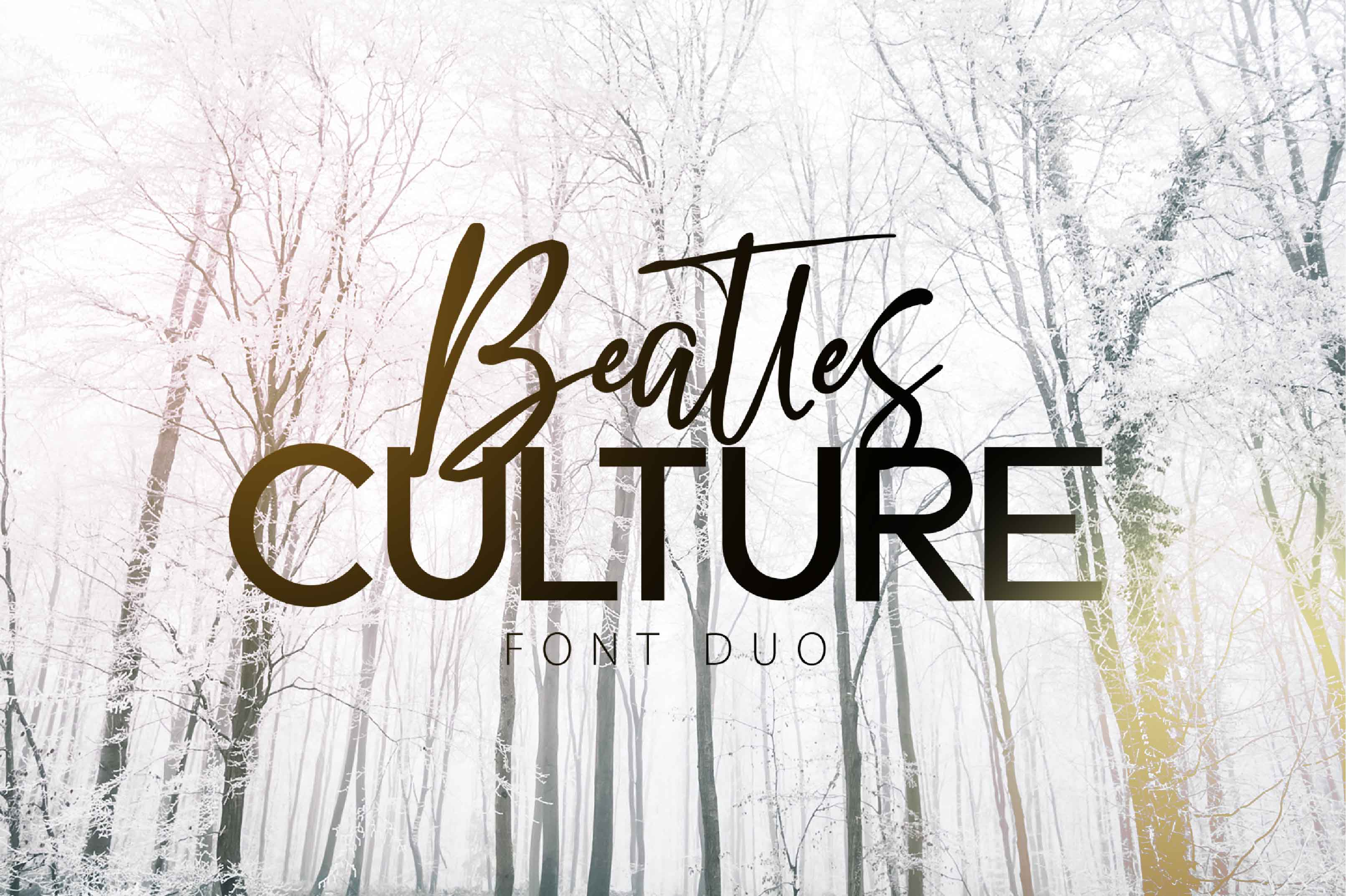 BEATLES CULTURE- Font Duo example image 1