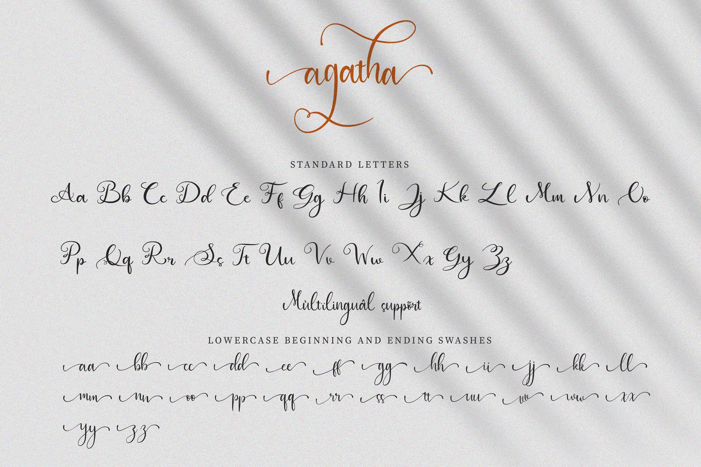 Agatha Script example image 8