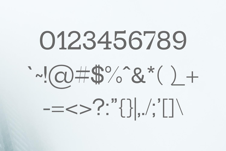 Paulose Modern Serif Font Family example image 3