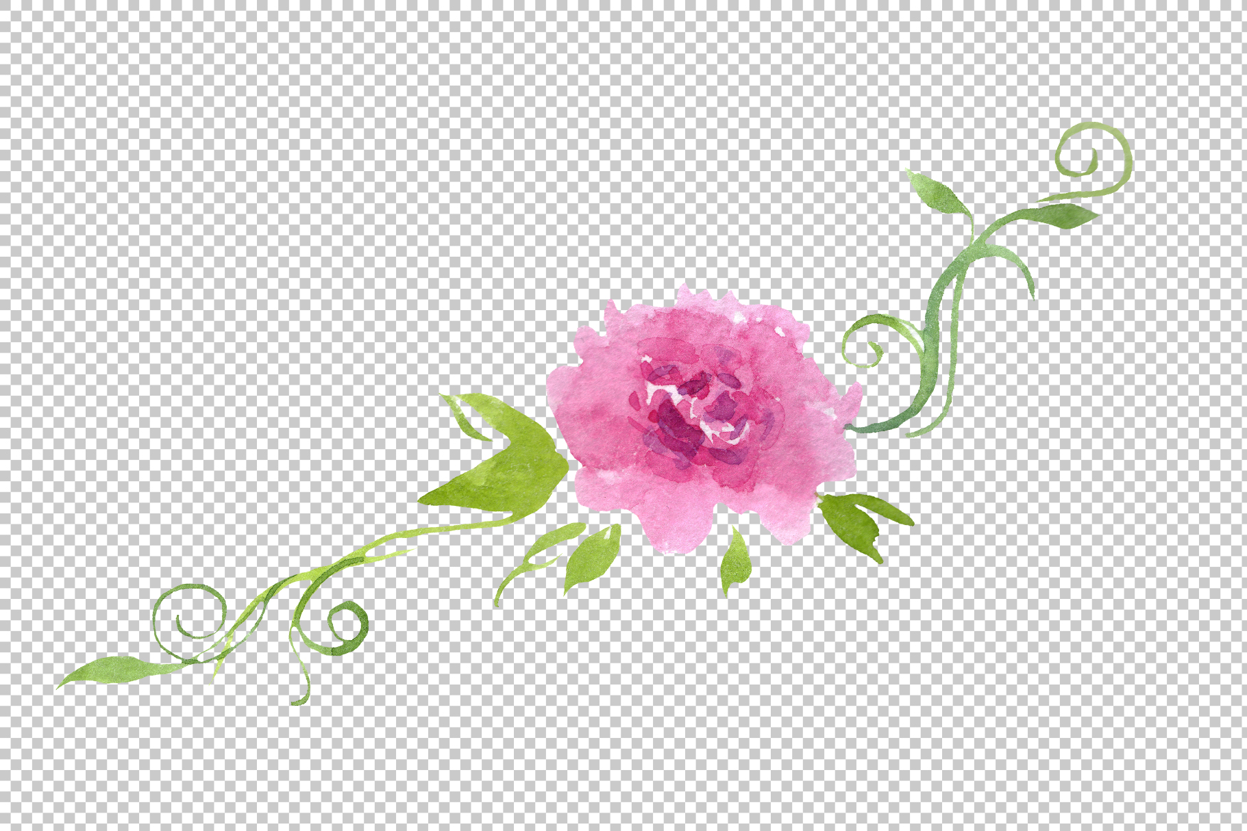 Delicate colorful peony PNG watercolor set example image 12