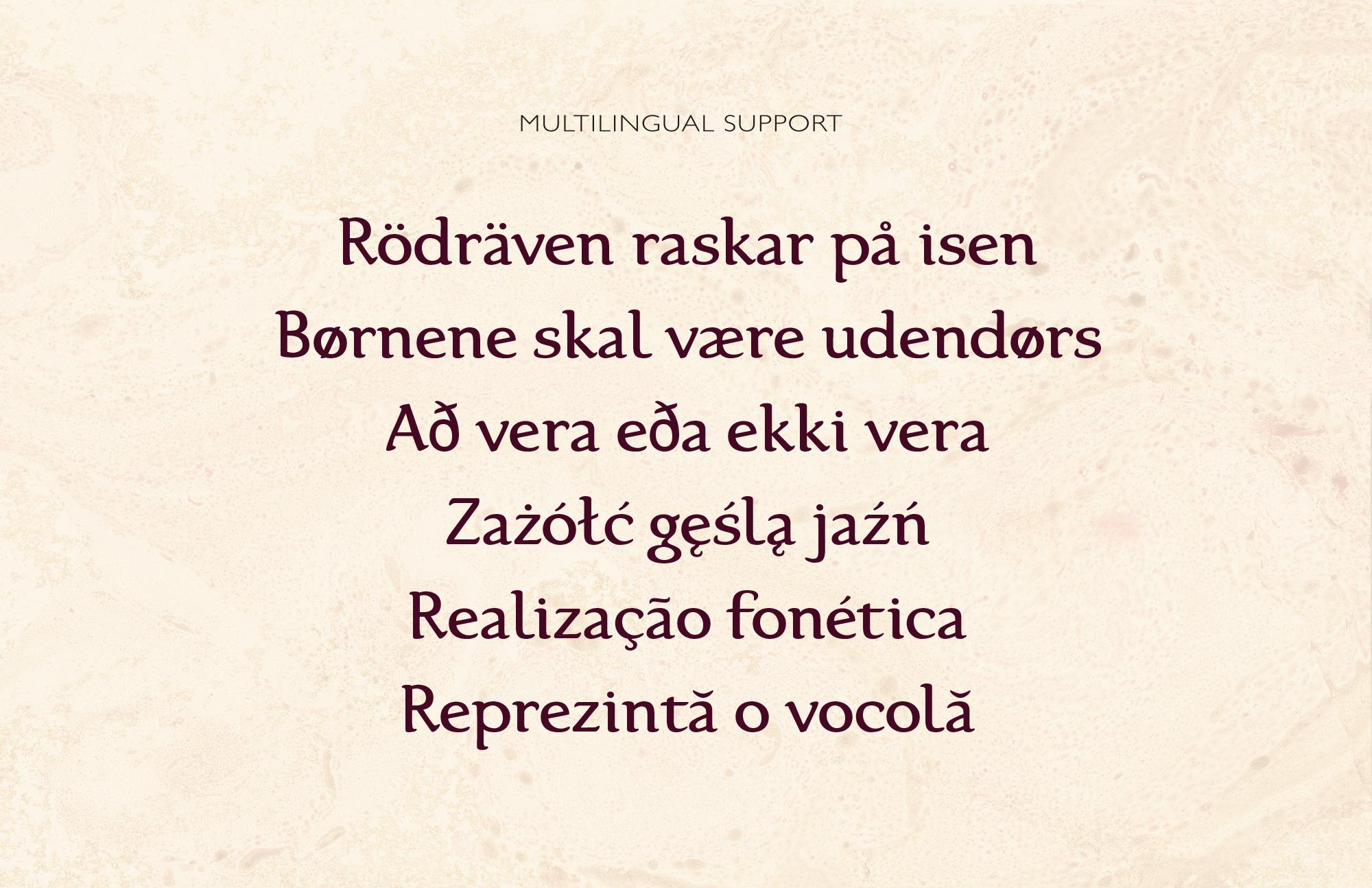 Karolina Serif Font example image 9