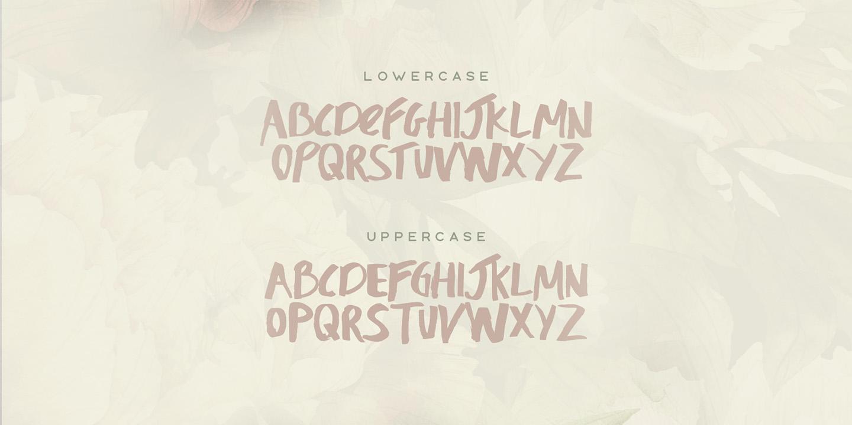 Honeysuckle Typeface example image 3