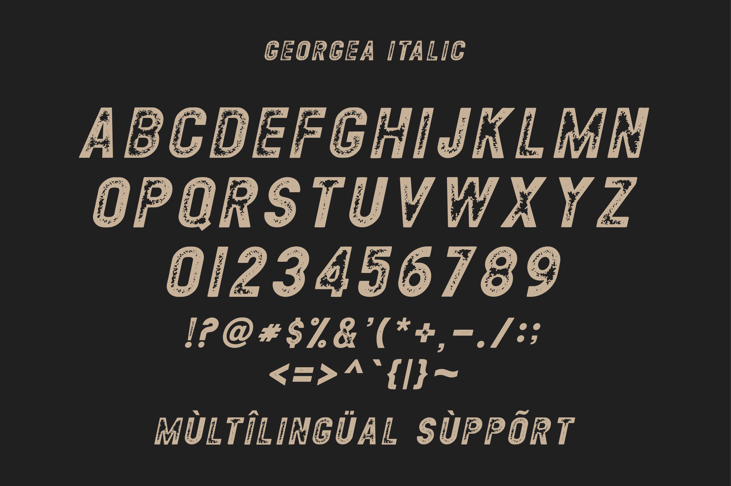 GEORGEA ALL CAPS FONT FAMILY WITH EXTRAS example image 12