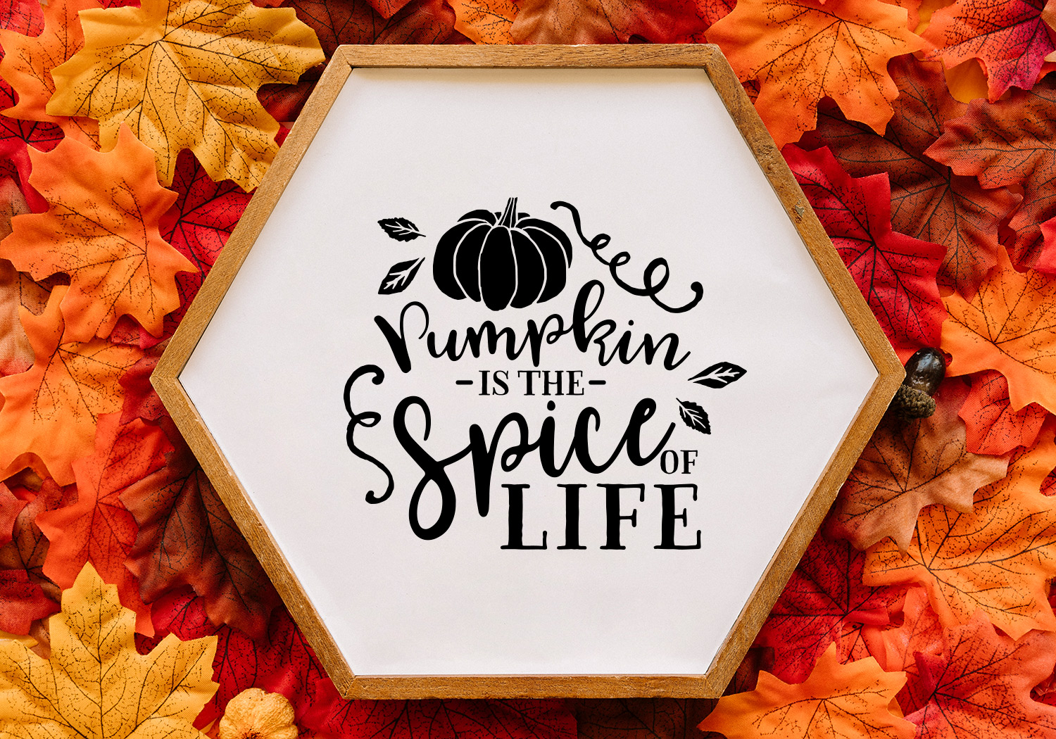 Pumpkin & Fall Quote SVG Cut File Bundle example image 8