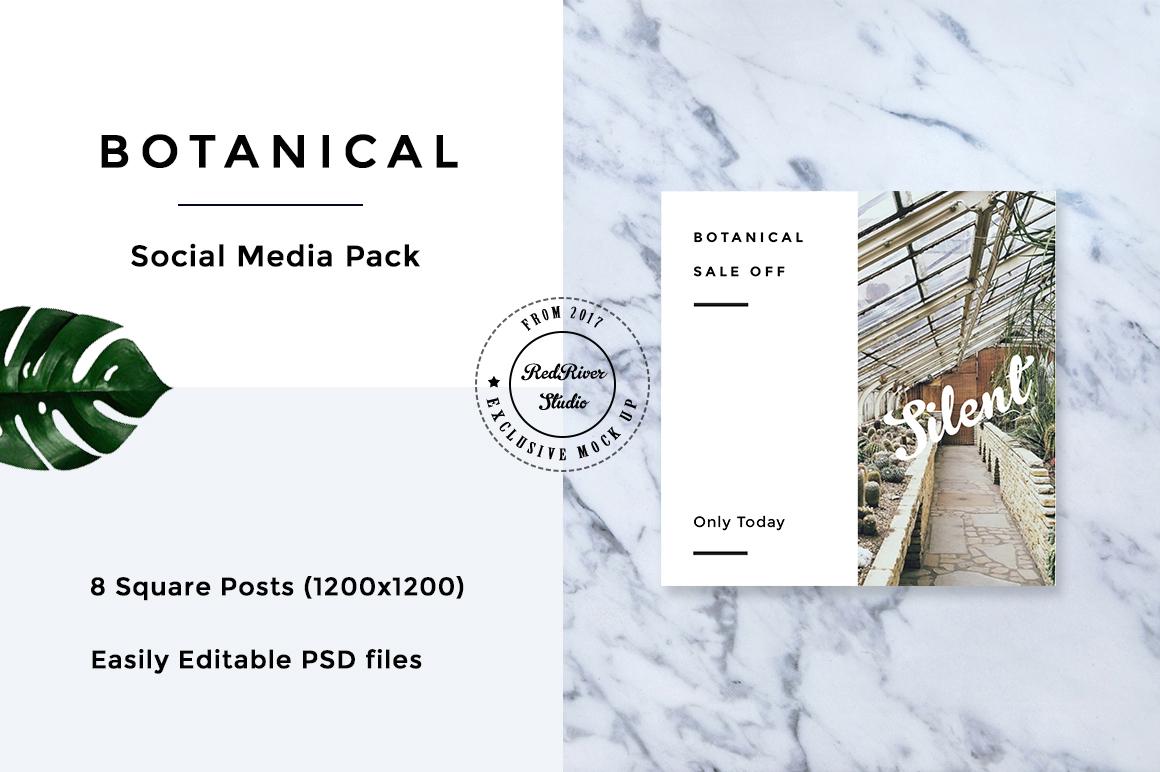 Botanical Social Media Pack example image 6