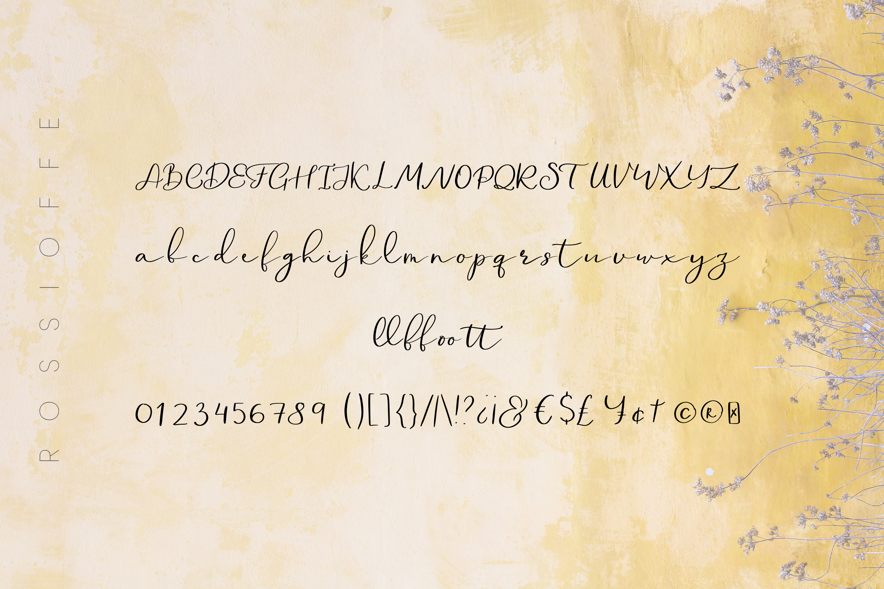 Rossioffe, handwritten script font example image 2