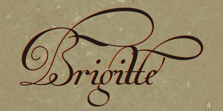Van den Velde Script PRO example image 17