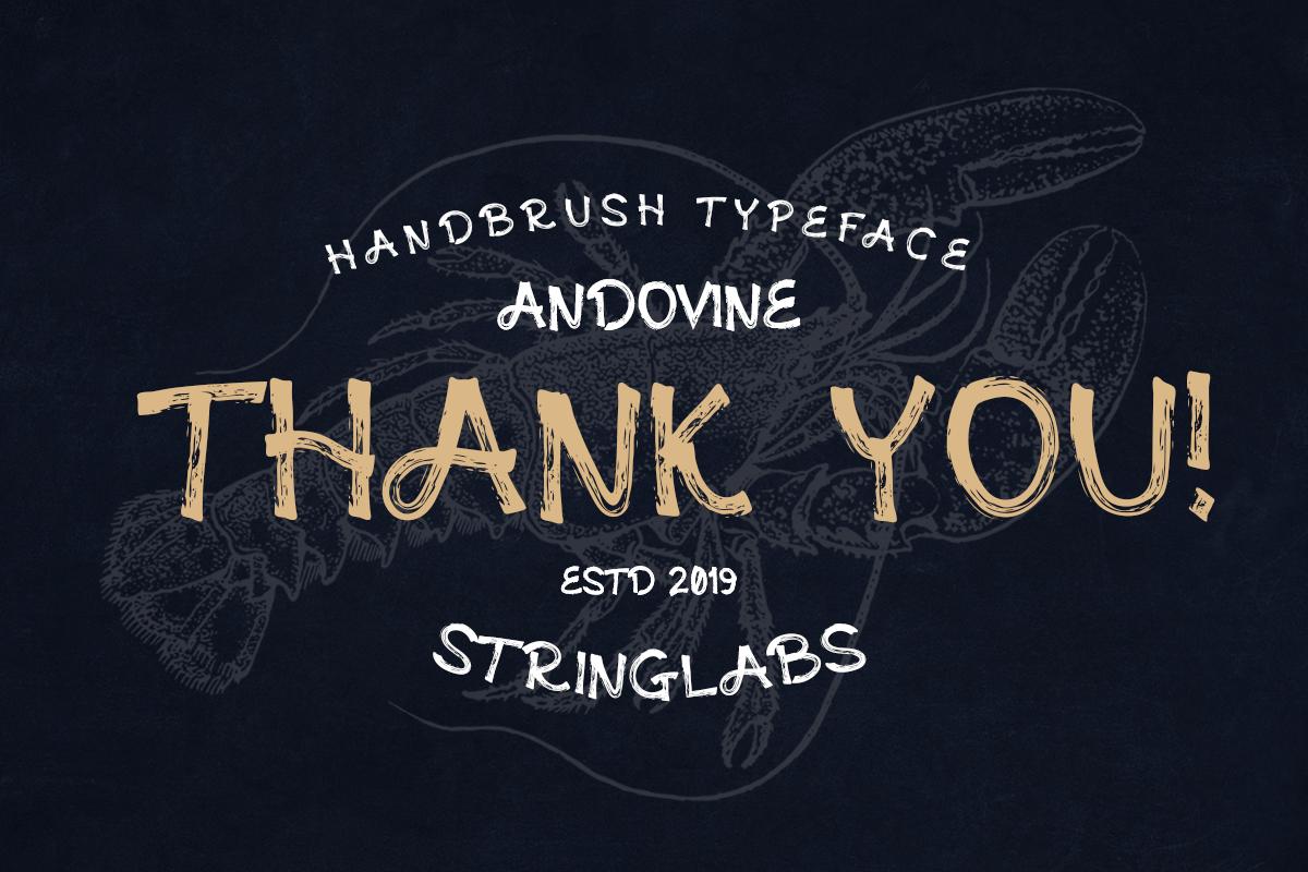 Andovine - Handbrush Typeface example image 9