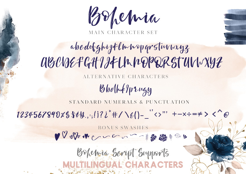 Bohemia - A Brush Script Font example image 11
