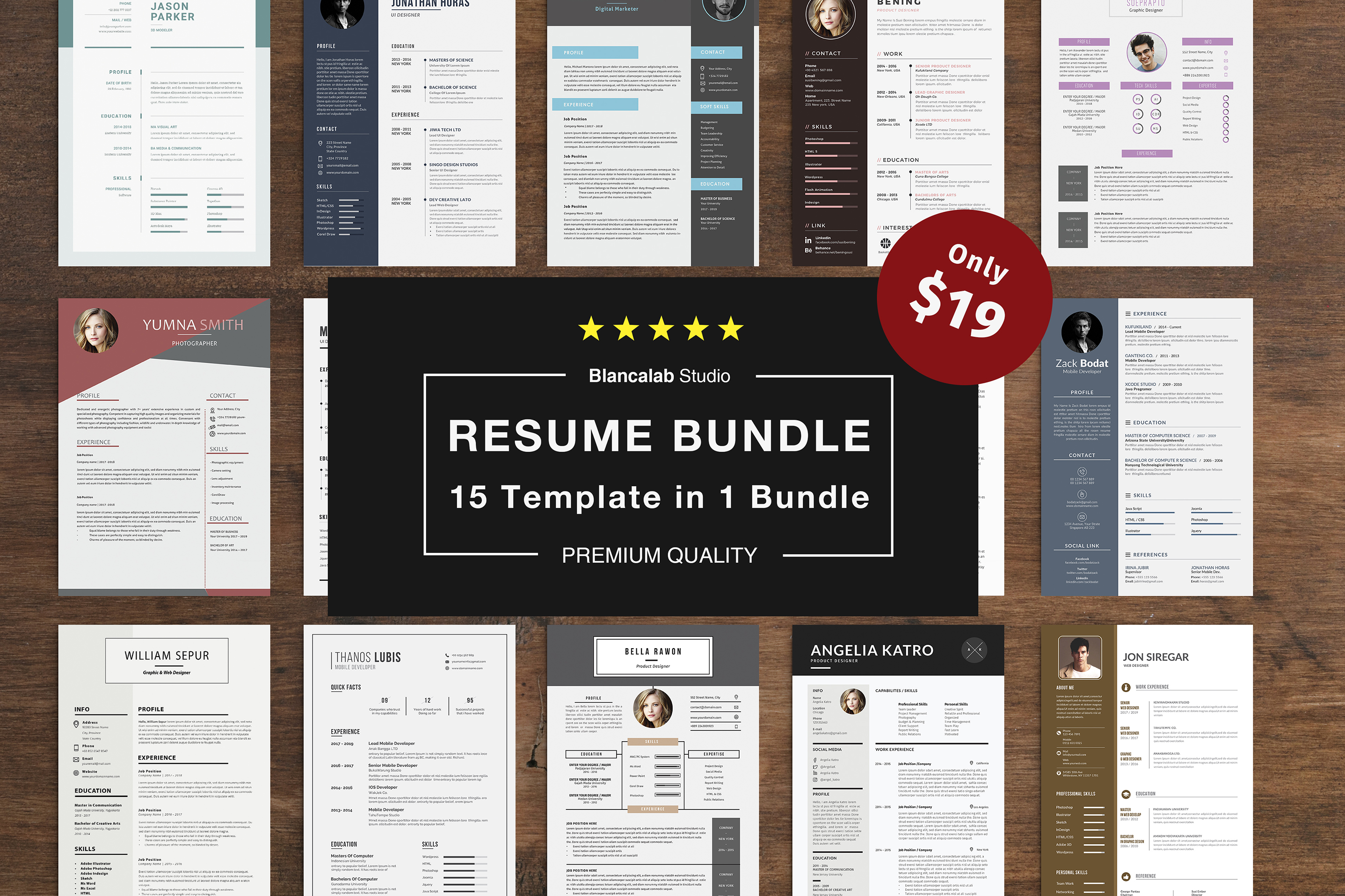 Job Seeker's Resume Bundle example image 1