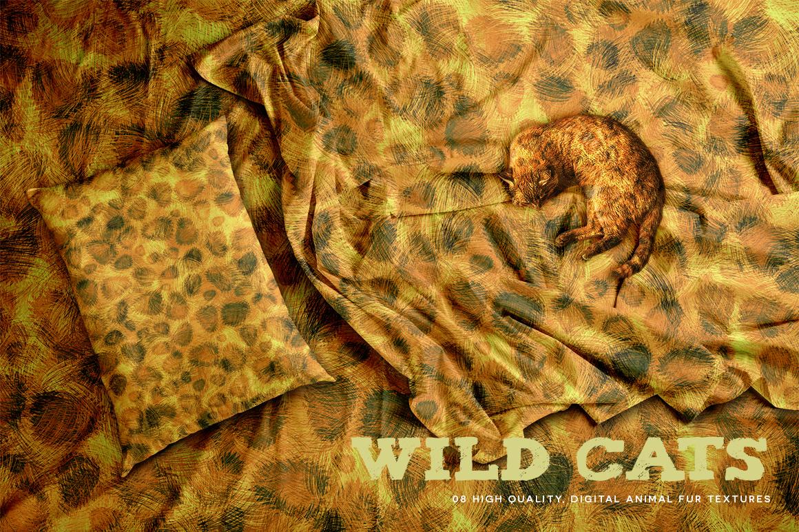 Wild Cats example image 2