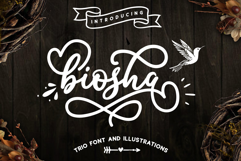 Designers font Bundle 11 Fonts example image 11