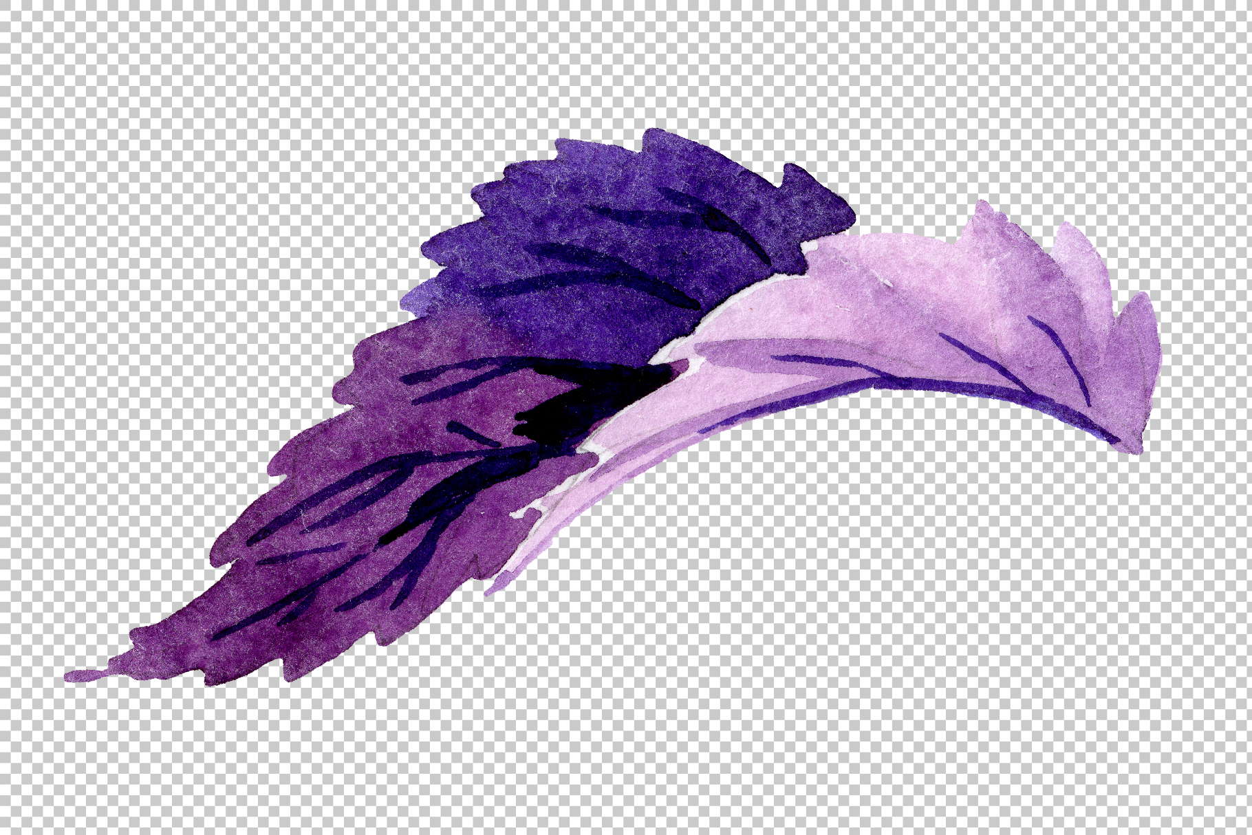 Begonia leaves Watercolor png example image 4