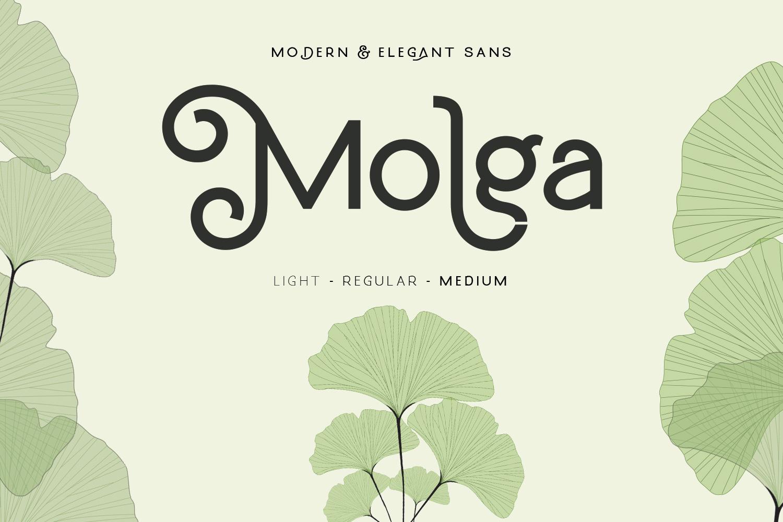 Molga font example image 1