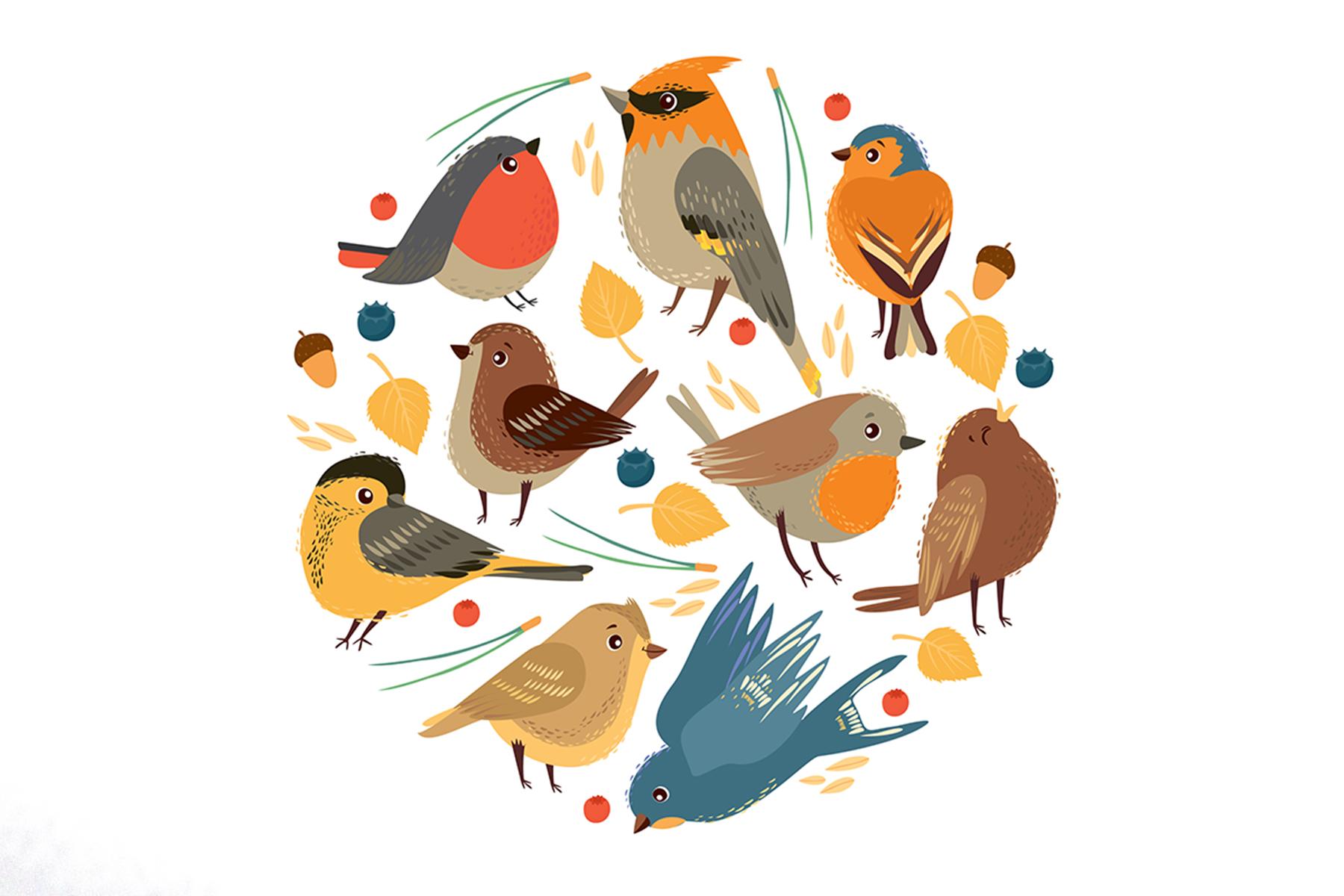 Little birds. Vector set example image 2