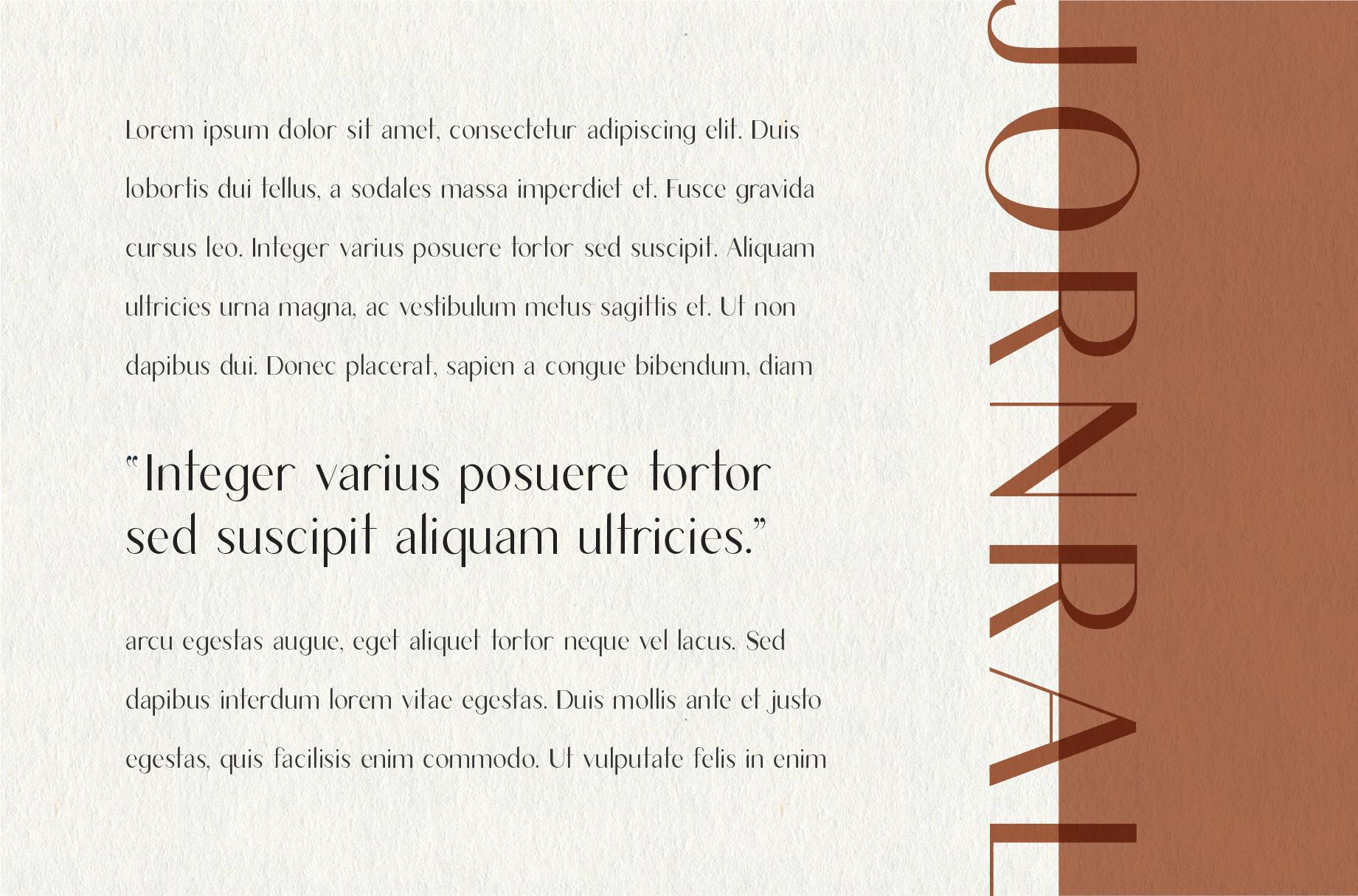 Lumina | Modern Sans Serif example image 4