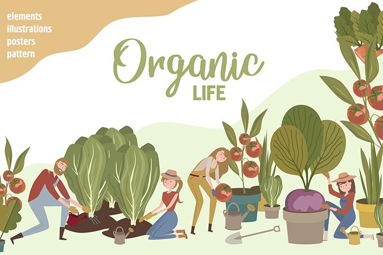 Organic life example image 1