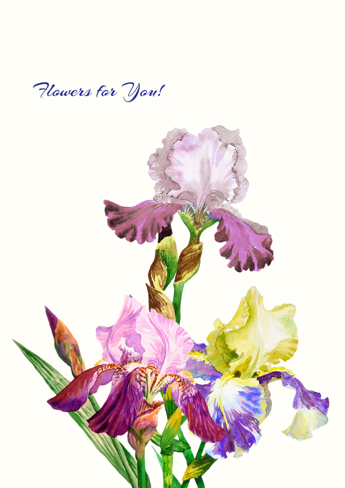 Bouquet with three irises example image 3