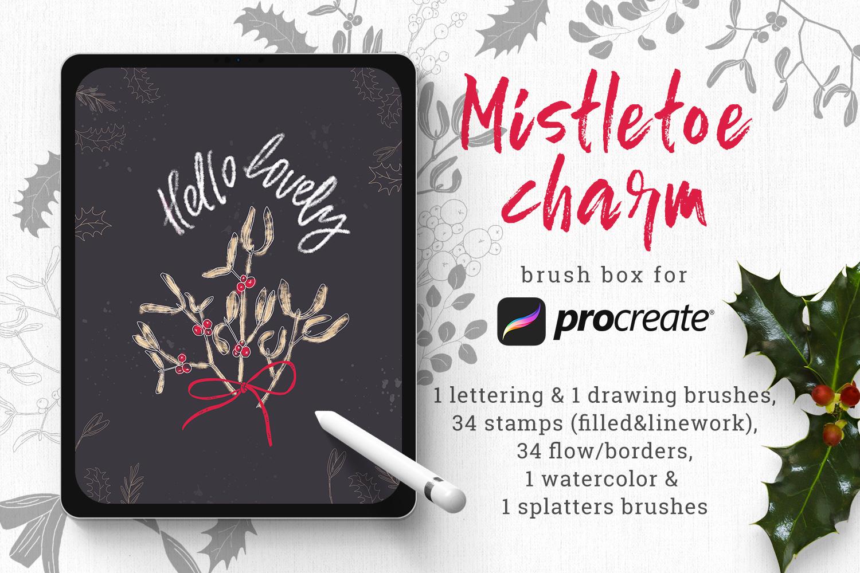 Mistletoe brush box for Procreate example image 1
