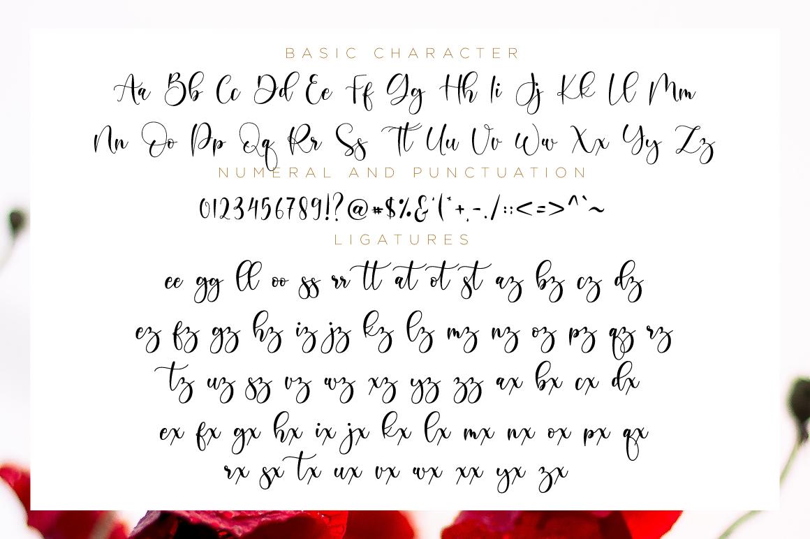 Boshela Script example image 11