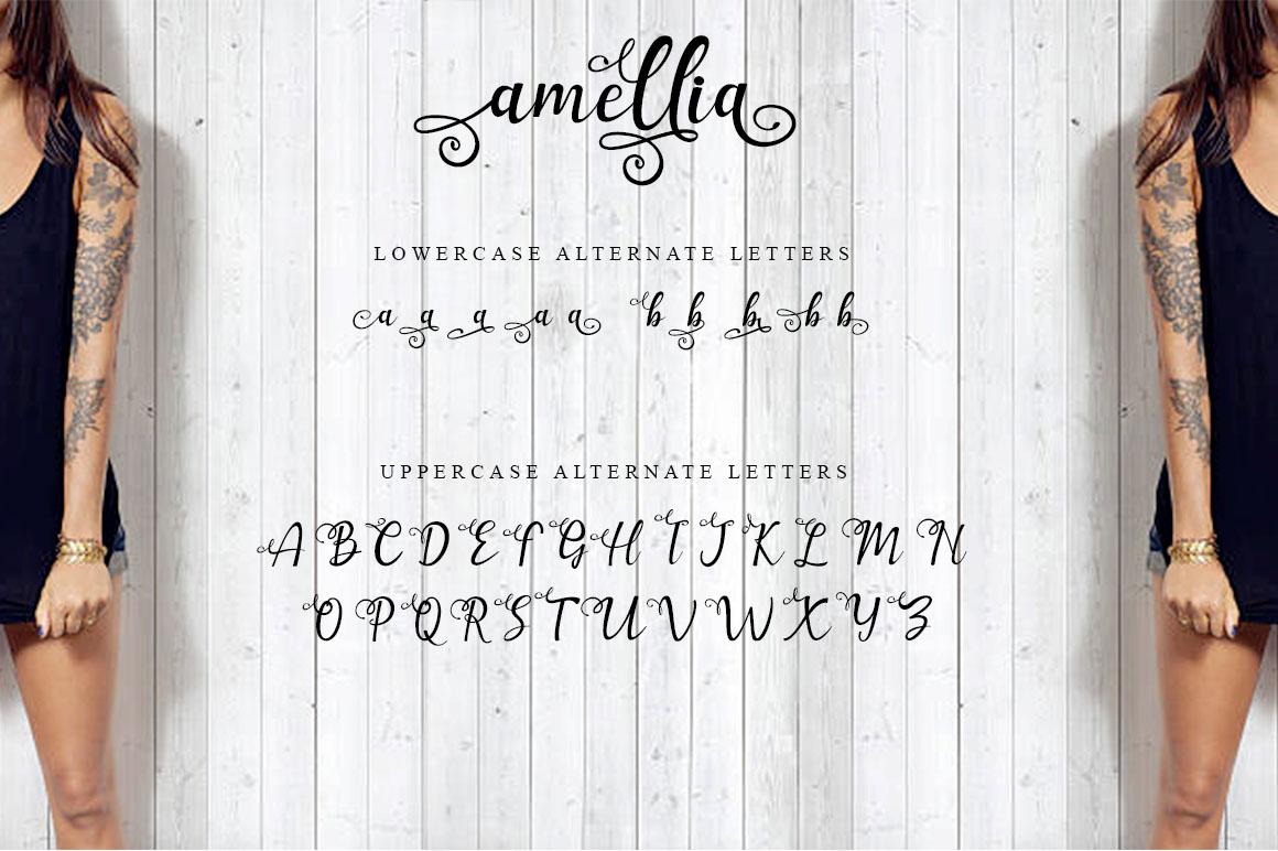 Amellia Beauty Script example image 5