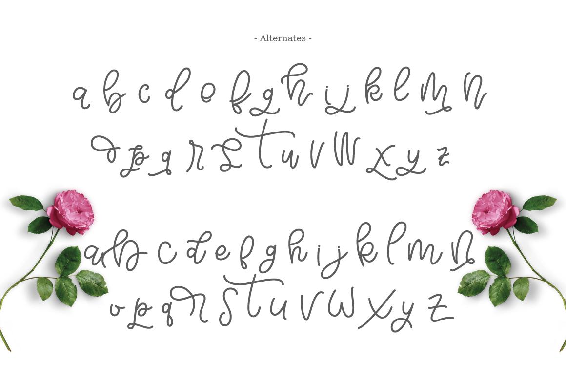 Bellinda Script example image 6