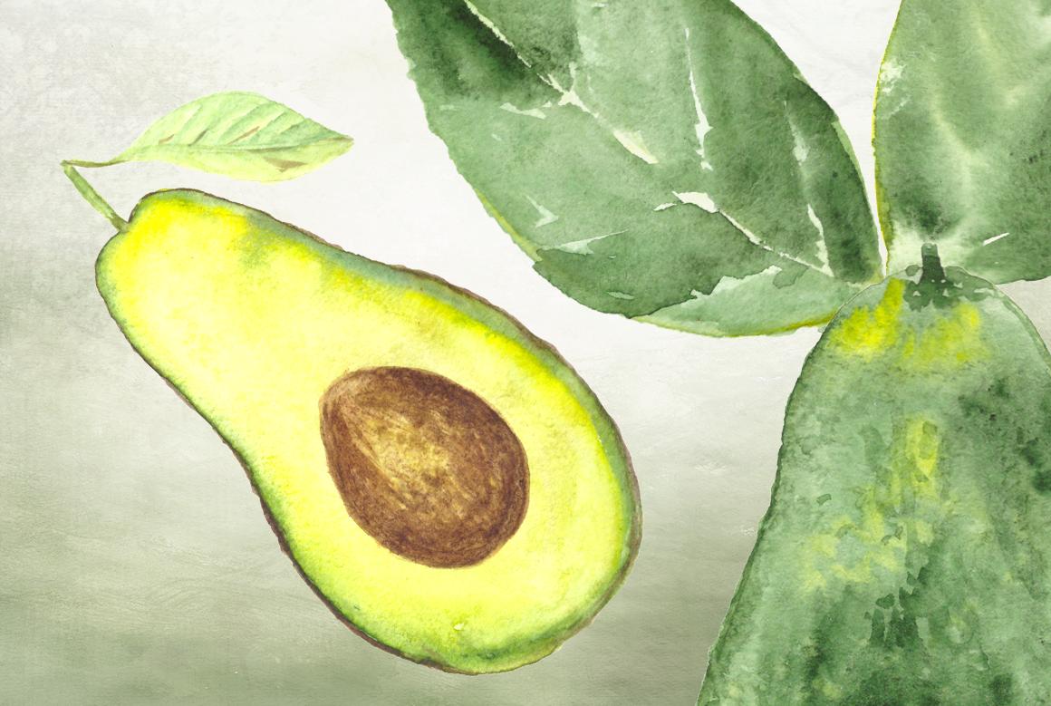 10 Watercolor Avocado Clip Art Set example image 2