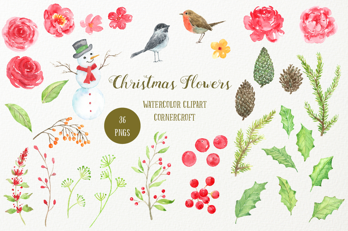Watercolor Clipart Christmas Flowers example image 5